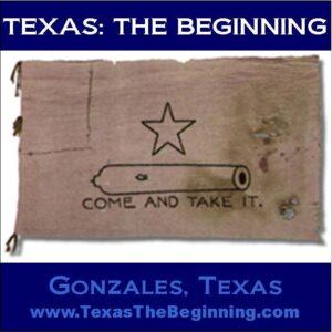 TexasTheBeginning2_ComeAndTakeItFlag