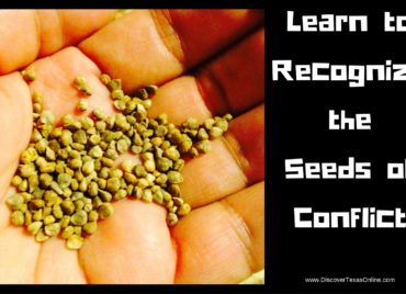 Learn to Spot the Seeds of Conflict